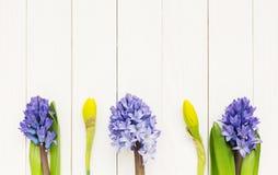 Frühlingsblumen über weißem Holztisch Lizenzfreies Stockbild