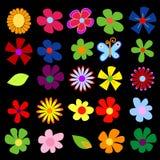 Frühlingsblumen lizenzfreie abbildung
