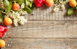 Frühlingsblumen, Aprikosen auf hölzernem Hintergrund Stockbilder