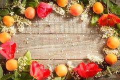 Frühlingsblumen, Aprikosen auf hölzernem Hintergrund Lizenzfreie Stockfotos