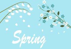 Frühlingsblumen auf Baum Lizenzfreie Stockfotos