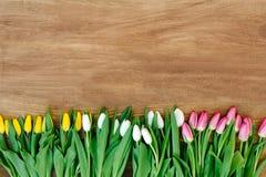 Frühlingsblumen auf dem Brett Stockfotos