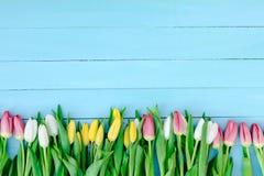 Frühlingsblumen auf dem Brett Stockbild