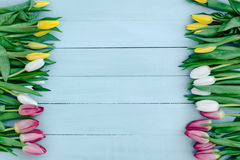 Frühlingsblumen auf dem Brett Lizenzfreies Stockfoto