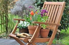 Frühlingsblumen auf einer Terrasse Lizenzfreie Stockfotos
