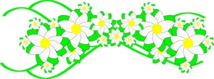 Frühlingsblumen auf grünen Bändern Stockfotos
