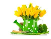Frühlingsblumen in der Gießkanne mit Gartenwerkzeugen Lizenzfreies Stockbild