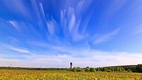 Frühlingsblumen des Löwenzahns field Wolken verwischt Geschossen auf Kennzeichen II Canons 5D mit Hauptl Linsen 4K stock video