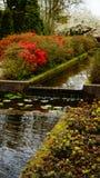 Frühlingsblumen: ein Wasserteich umgeben durch bunte Büsche lizenzfreie stockbilder