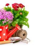 Frühlingsblumen mit Gartenhilfsmitteln Stockfotografie