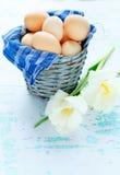 Frühlingsblumen und -eier im Korb stockbilder