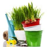 Frühlingsblumen und Gartenhilfsmittel Stockfotos