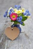 Frühlingsblumen und -inneres Stockbilder