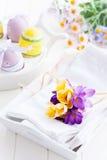 Frühlingsblumen und Ostereier Lizenzfreies Stockfoto
