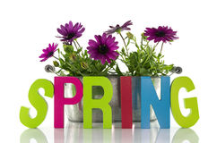 Frühlingsblumen und -text Stockfoto