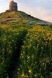 Frühlingsblumenfeld mit der Spur, zum sich des Kontrollturms zurückzuziehen Stockfotografie