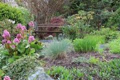 Frühlingsblumengarten Lizenzfreies Stockbild