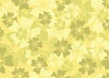 Frühlingsblumenhintergrund Lizenzfreie Stockbilder