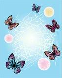 Frühlingsblumenhintergrund mit Schmetterlingen Lizenzfreie Stockfotos