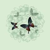 Frühlingsblumenhintergrund mit Schmetterlingen, Handzeichnung Vektor vektor abbildung