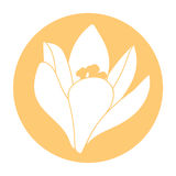 Frühlingsblumenikone Weiße Krokusblume Krokus, Safran, Kräuter Flache Ikone des orange runden Kreises Auch im corel abgehobenen B Stockfotos