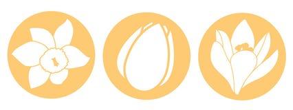 Frühlingsblumenikone Weiße Narzissen-, Tulpen- und Krokusblumen Flache Ikonen des orange runden Kreises Auch im corel abgehobenen Lizenzfreie Stockfotos