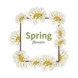 Frühlingsblumenillustrationsrahmen-Vektorhintergrund Stockfoto
