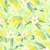 Frühlingsblumenmuster Stockbilder