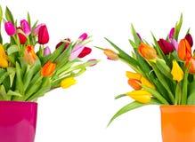 Frühlingsblumensträuße Stockbilder
