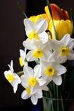 Frühlingsblumenstrauß Stockbilder