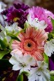 Frühlingsblumenstrauß Lizenzfreie Stockfotos