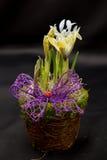 Frühlingsblumenvorbereitungen Stockfoto
