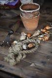 Frühlingsblumenzwiebeln mit Gartenwerkzeug und keramischen Töpfen auf Holztisch Stockbilder