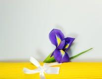 Frühlingsdekoration Lizenzfreies Stockfoto