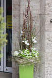 Frühlingsdekorationsblumenladen Stockfoto