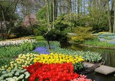Frühlingsfarben Stockbild