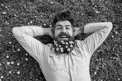 Frühlingsfeiertagskonzept Hippie auf glücklichem Gesicht legt auf Gras, Draufsicht Kerl schaut freundlich mit Gänseblümchen- oder stockfotos
