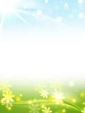Frühlingsfeld des blauen Grüns Lizenzfreie Stockfotos