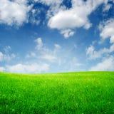 Frühlingsfeld und -wolken Lizenzfreies Stockfoto