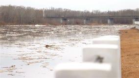 Frühlingsfluß mit schmutzigem braunem Wasser und Eis Schwimmen des Eises stock video