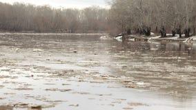 Frühlingsfluß mit schmutzigem braunem Wasser und Eis Schwimmen des Eises stock video footage