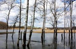 Frühlingsflut in Russland Stockbild