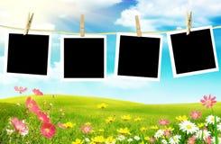 Frühlingsfotos stockbild