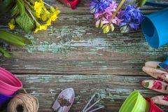 Frühlingsgartenarbeitrahmen mit blauer und rosa Hyazinthe blüht stockfotos