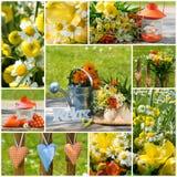 Frühlingsgartencollage Stockfotos
