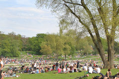 Frühlingsgefühle - junge Leute, die im Park kühlen Stockbild