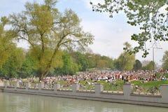 Frühlingsgefühle - junge Leute, die im Park kühlen Lizenzfreie Stockfotos