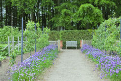 Frühlingsgemüse- und -fruchtgarten mit Holzbank Stockbilder