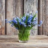 Frühlingsglockenblume blüht im kleinen Vase auf hölzernem Hintergrund Noch Leben 1 Lizenzfreie Stockfotos