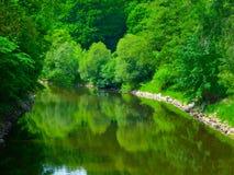 Frühlingsgrün reflektiert im Fluss Lizenzfreie Stockfotos